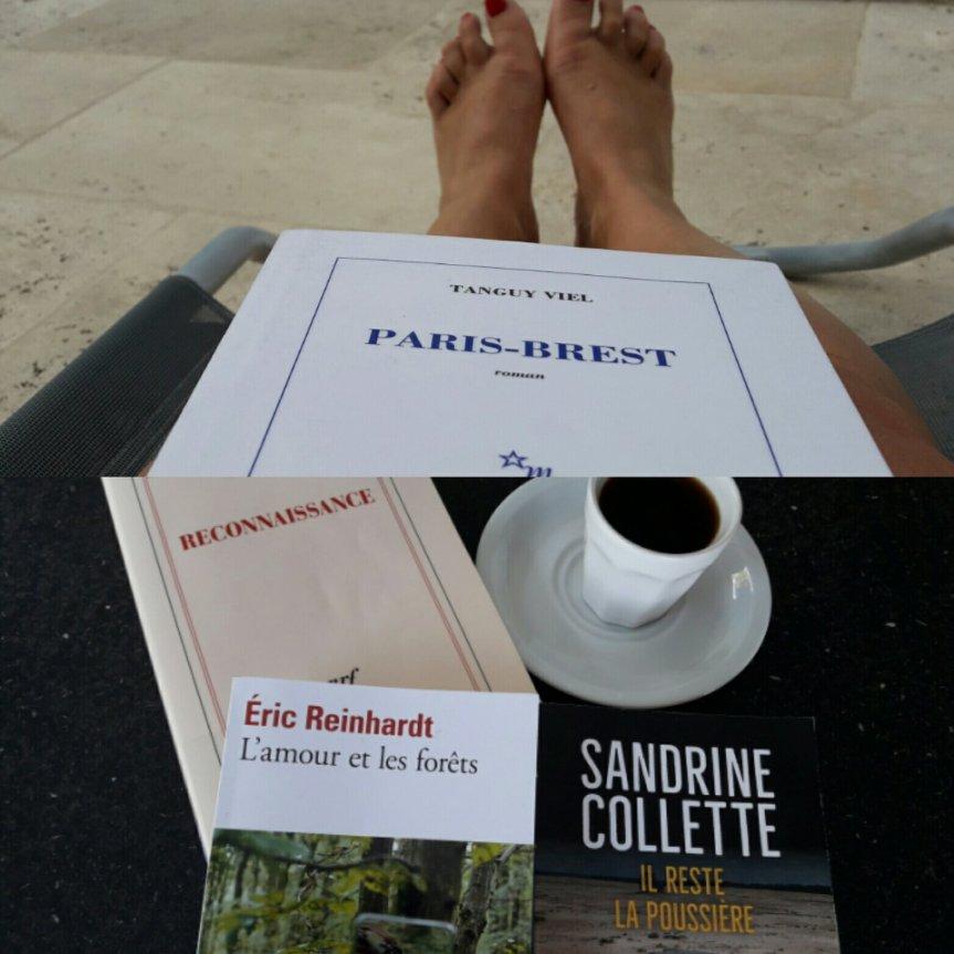 4 nouveaux livres dans ma 2e sélectiond'été